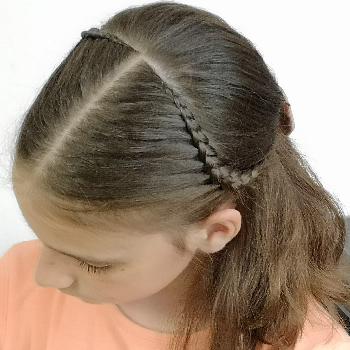 peinado fácil de media coleta